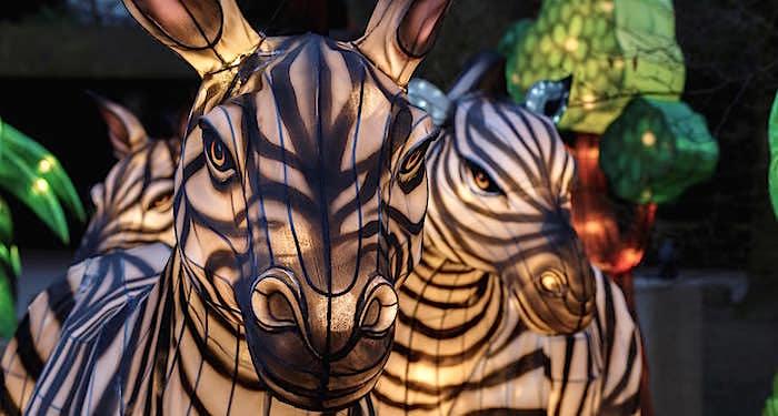 China-Light-Festival im Kölner Zoo