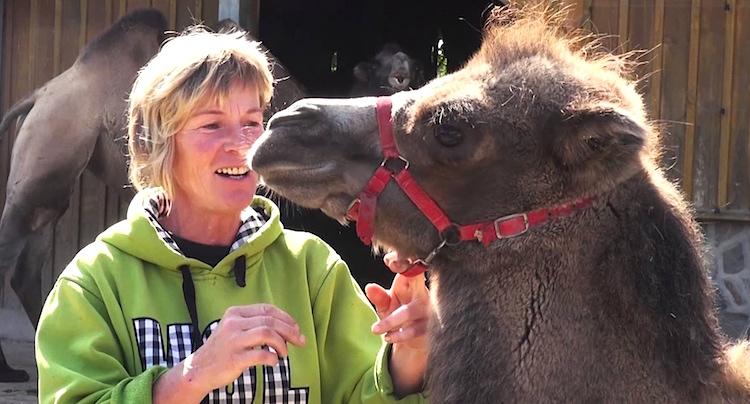 Zoo Arche Noah Grömitz Gutschein 2 für 1 Coupon