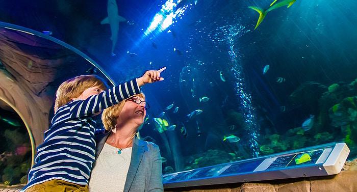 Sea Life Speyer Gutschein 2 für 1 Coupon