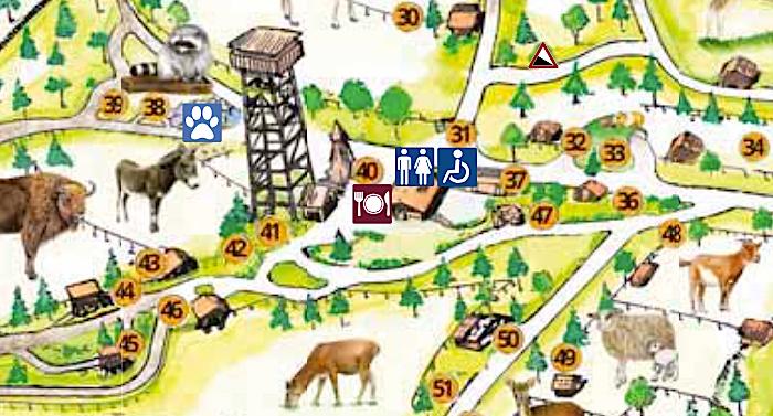 Wildpark Schwarze Berge Karte Parkplan Lageplan