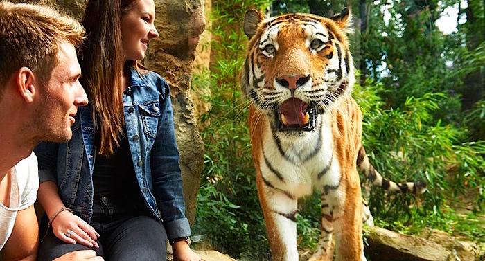 Zoom Erlebniswelt Zoo Gelsenkirchen Gutschein
