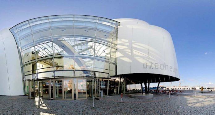 Deutsches Meeresmuseum Gutschein Gewinnspiel