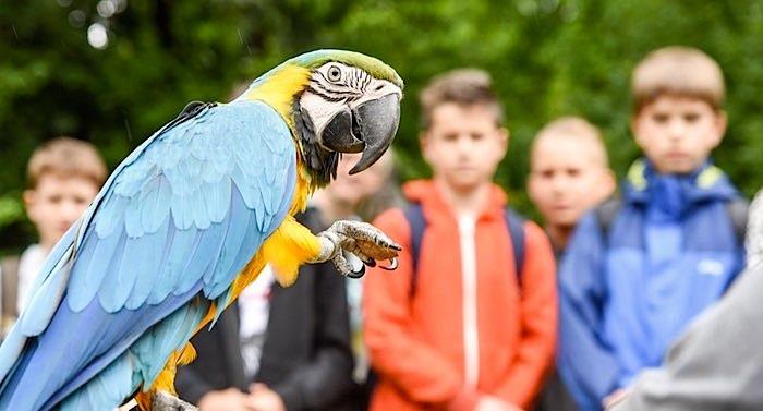 Tierpark Herborn Gutschein
