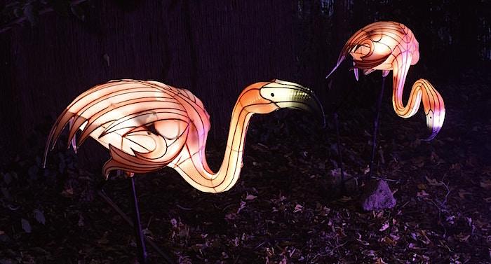 """Zoo Osnabrück: """"Zoo-Lights"""""""