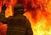 Australien Feuer Zoo