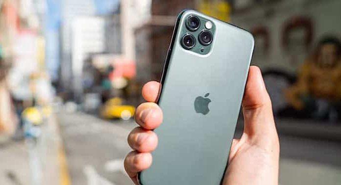 Zoo Royal Apple iPhone 11 Gewinnspiel