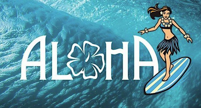 Aloha Waveland: Surfpark und Südseeparadies in Würzburg geplant