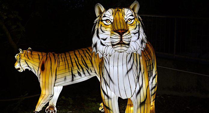 "Zoo Osnabrück: Veranstaltung ""Zoo-Lights"" im November 2020"