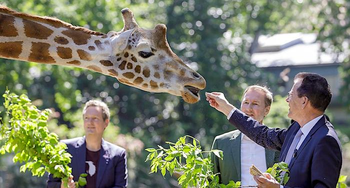 Im Zoo Berlin gilt Corona Maskenpflicht