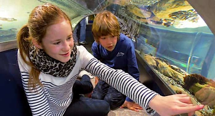 Multimar Gewinnspiel: Wochenende an der Nordsee kostenlos gewinnen