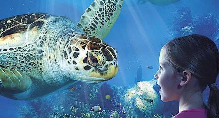 Ostseecard: Bonuskarte 2021 Rabatte für Freizeit und Familie