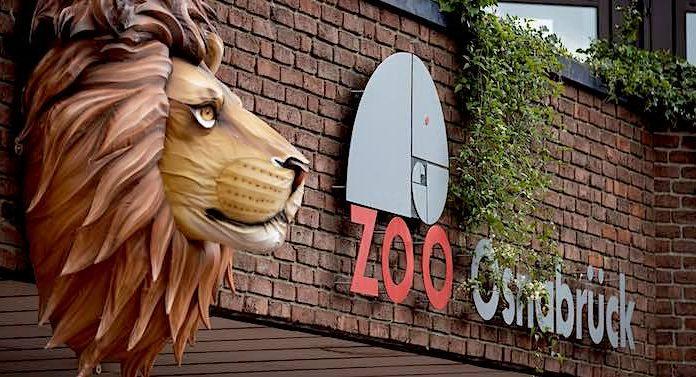 """Zoo Osnabrück: 8 Millionen Euro für neue """"Wasserwelten"""""""