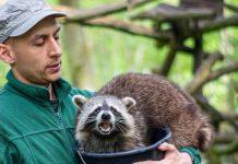 Wildpark Müden: Spenden für Betroffene der Flutkatastrophe 2021
